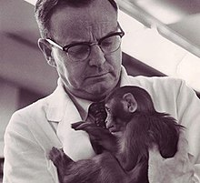 Harry Harlow and monkey.jpg
