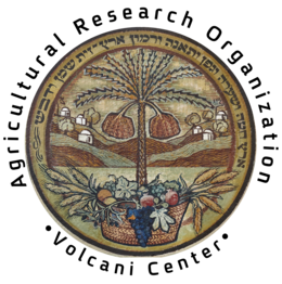 סמליל מרכז וולקני