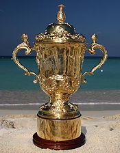 Rugby webb Ellis Cup.jpg