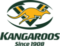 Australia national rugby league team logo.png