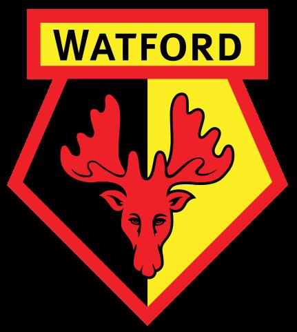 Resultado de imagem para Watford png