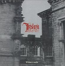 Tristania Widow Weeds.jpg