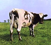 Pink Floyd – Atom Heart Mother (album cover).jpg