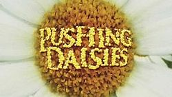 PushingDaisieslogo.jpg