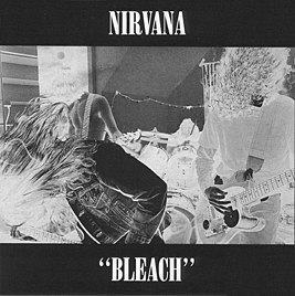 Bleach cover.jpg