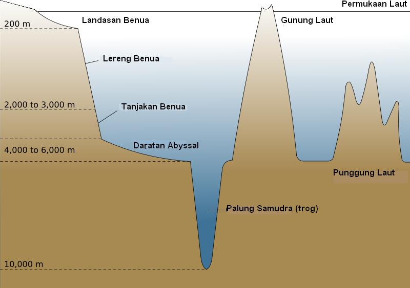 Laut palung yang terdalam di bumi adalah paling mariana, barat laut