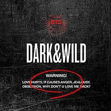 BTS Dark and Wild.jpg