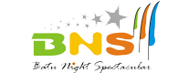 Logo bns.png