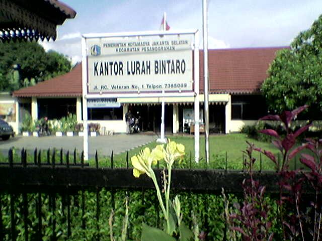 kelurahan-bintaro
