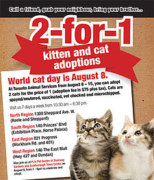 Hari Kucing Sedunia Wikipedia Bahasa Indonesia