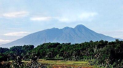 Gunung Salak 235