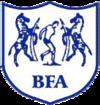 Tim nasional sepak bola Botswana  Wikipedia bahasa