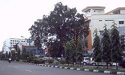 Kertak Baru Ilir, Banjarmasin Tengah, Banjarmasin