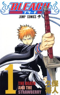 Bleach cover 01.jpg