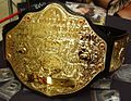 World Heavyweight Championship (WWE) (2002) - present.jpg