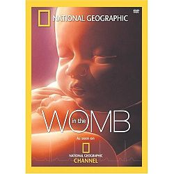 In the womb dvd.jpg