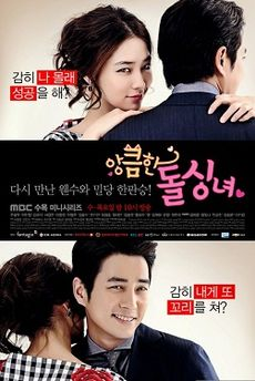 Cunning Single Lady Official Cover Poster.jpg