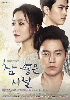 Wonderful Days TV series-poster.jpg