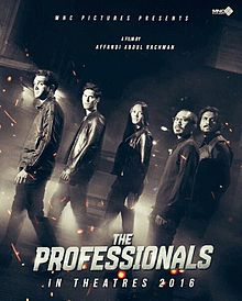 Teaser the professionals.jpg