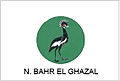 Northern Bahr el Ghazal flag.jpg