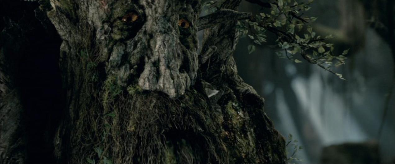 anello albero definizione di datazione