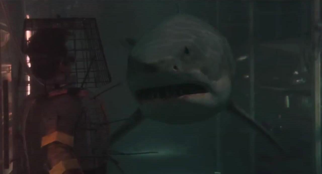 Shark3D.jpg