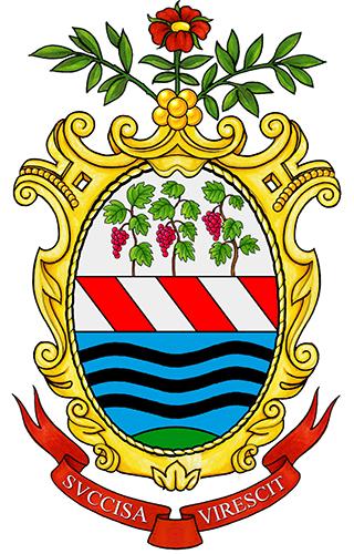 Matrimonio Comune Trevignano Romano : File trevignano romano stemma wikipedia