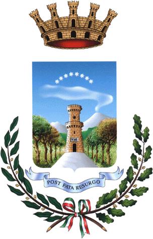 https://upload.wikimedia.org/wikipedia/it/3/39/Torre_del_Greco-Stemma.png