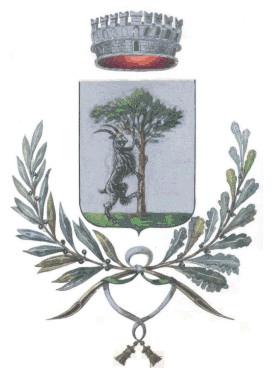 Risultati immagini per logo comune di marano vicentino