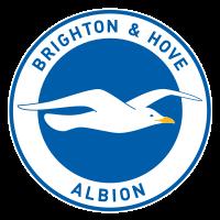 Brighton & Hove Albion Football Club - Wikipedia