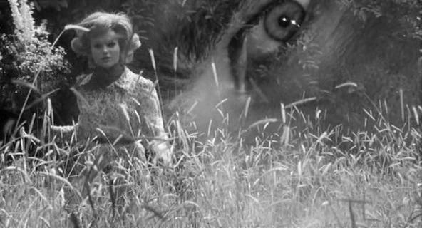 Il Terzo Occhio Film 1966 Wikipedia