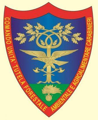 Stemma Comando unità per la tutela forestale, ambientale e agroalimentare