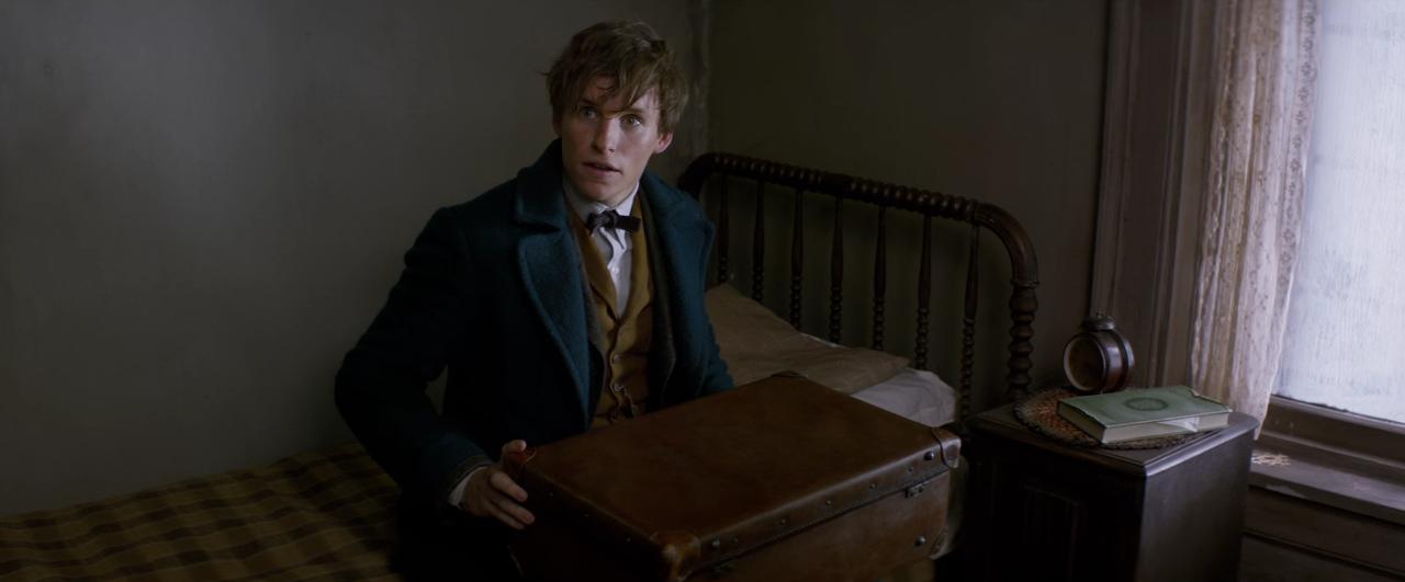 Hermione Granger e Ron Weasley datazione