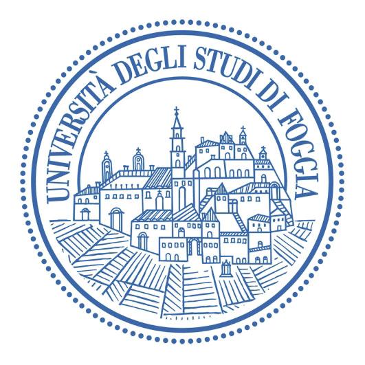 Università degli studi di Foggia in Germanyy