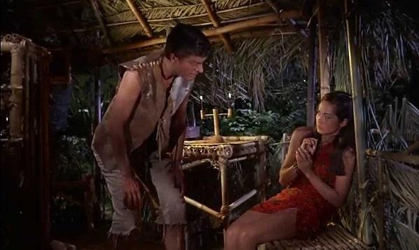 Amazoncom: Lt Robin Crusoe, USN: