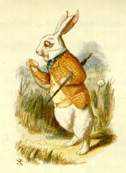 Illustrazione di John Tenniel del 1865