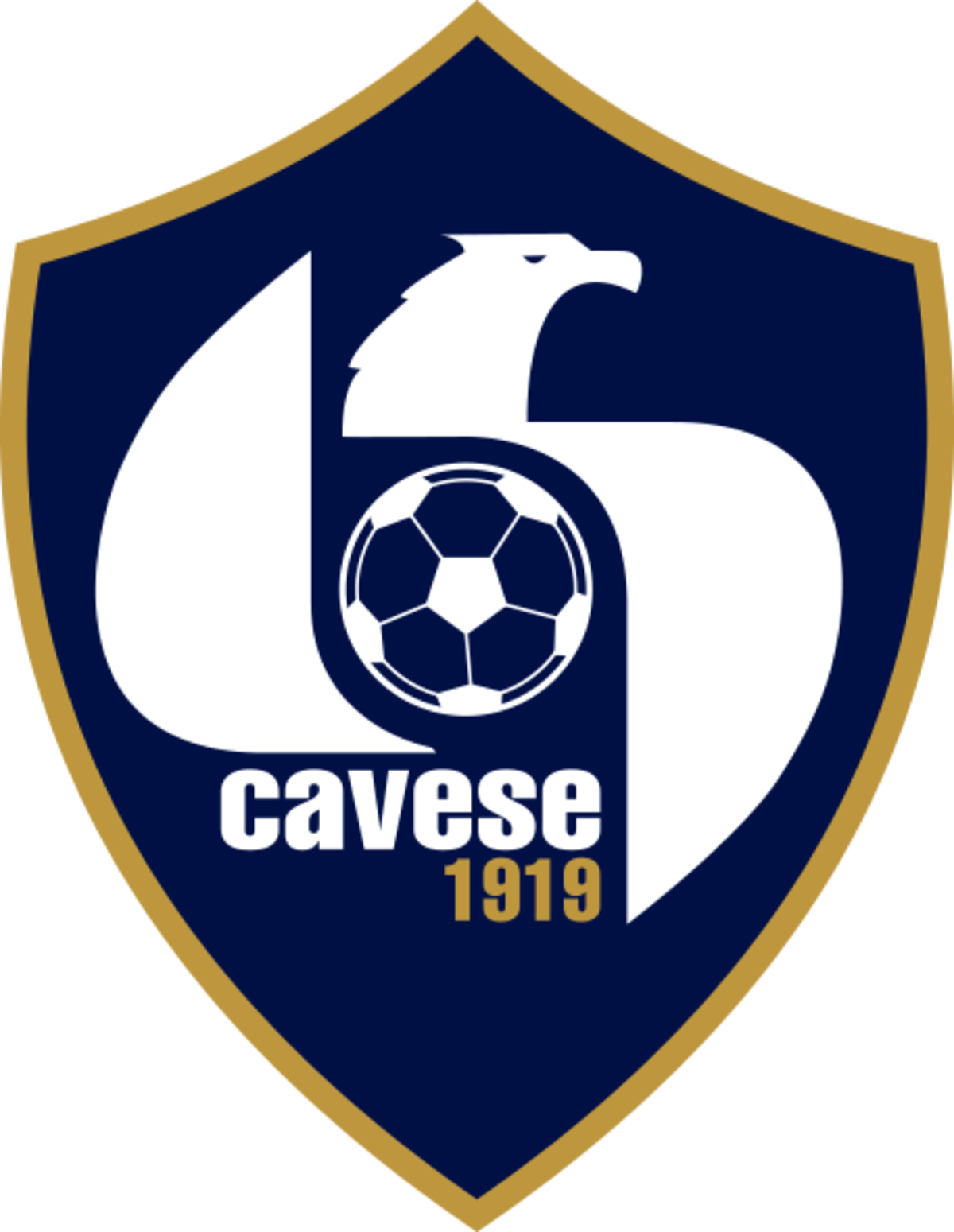 Cavese 1919 wikipedia for B b srl milano