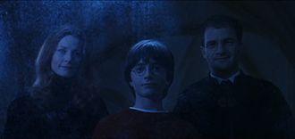 Potter famiglia wikipedia - Lo specchio di beatrice wikipedia ...