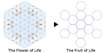 Fuit-of-life Stages 61-circles-to-13-circles.png