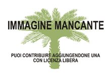 Immagine di Cycas lane-poolei mancante