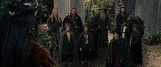 Il Signore degli Anelli - La Compagnia dell'Anello 2001