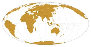 Cartina Muta Del Planisfero.Carta Geografica Wikipedia