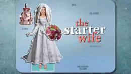 The Starter Wife.png