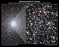 Hubble mass segregation.jpg