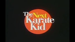 Karate Kid 4 Stream