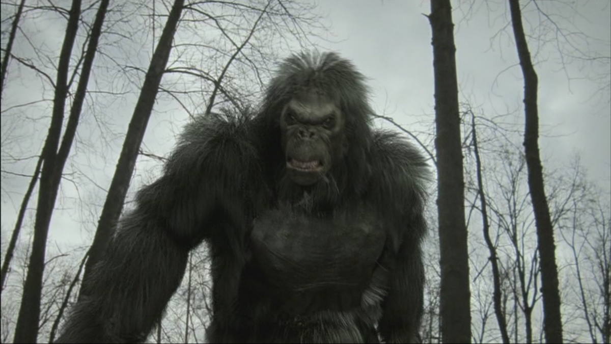 Bigfoot Filme