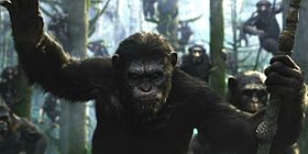 Il pianeta delle scimmie - Revolution.jpg