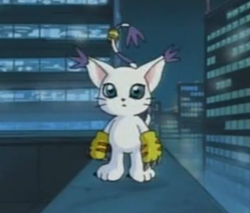Gatomon.png