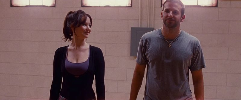 File:Silver Linings Playbook.JPG