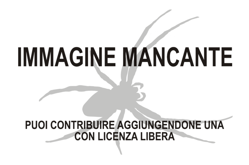 File:Missing Arachnida.png